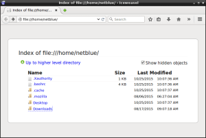 Firefox home directory.